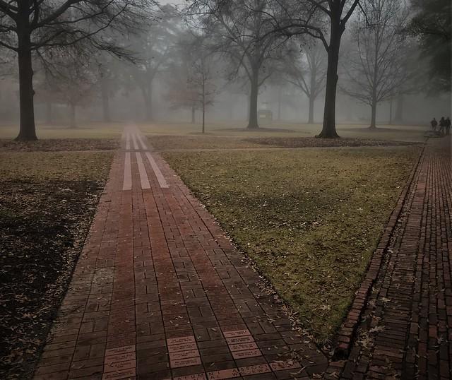 Foggy morning at the Horseshoe, USC