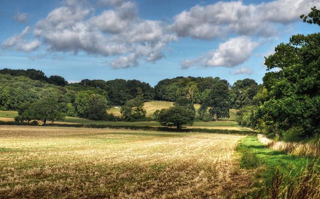 Purser's Hills, Haselbech, Northamptonshire