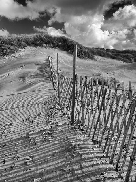 In the dunes .... Aberdyfi.