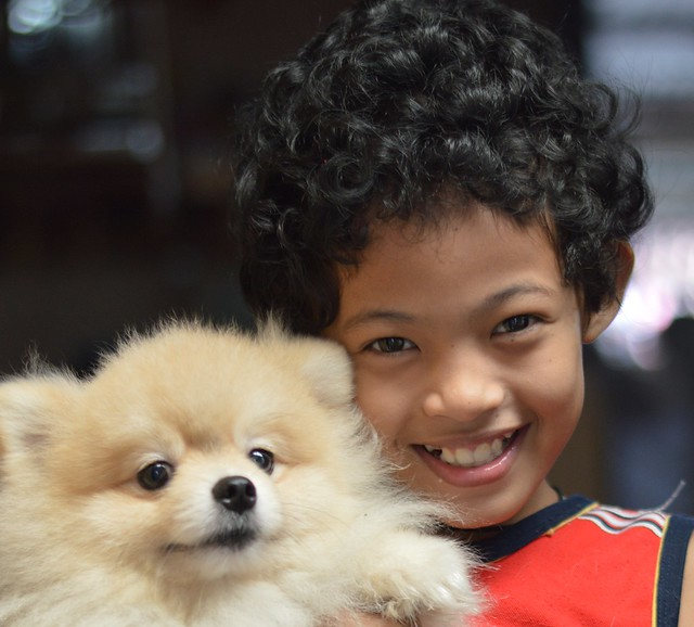 curly haired boy and his dog