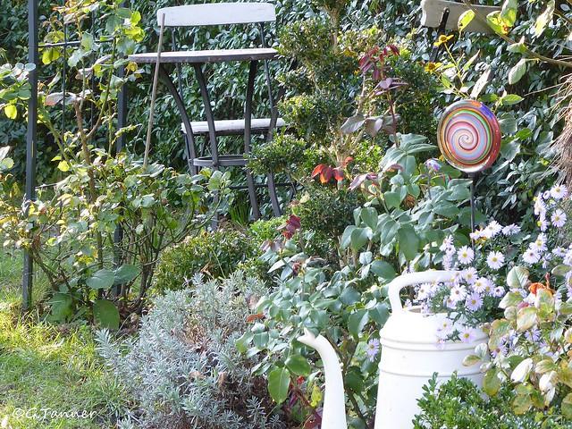 Garten September 2021