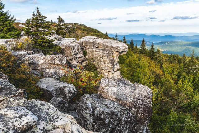 At Dolly Sods
