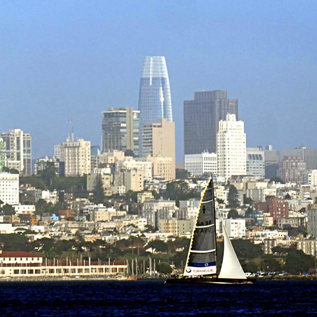 Oracle sailing, San Francisco Bay