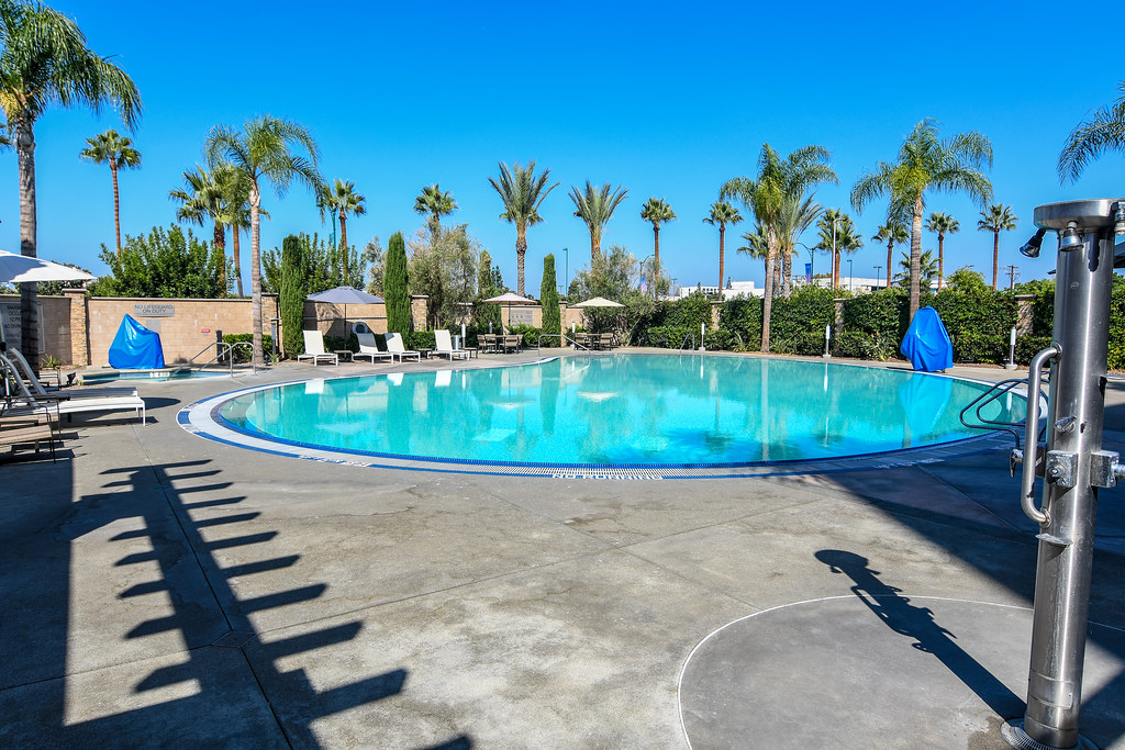 Suncoast Park Hotel pool
