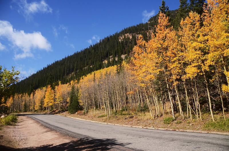 Scenic Drives in Guanella Pass, Colorado (43)