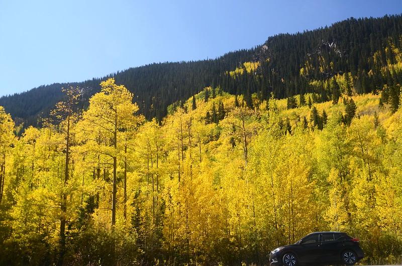 Scenic Drives in Guanella Pass, Colorado (35)