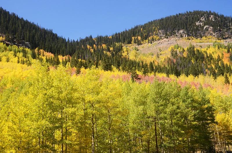 Scenic Drives in Guanella Pass, Colorado (16)