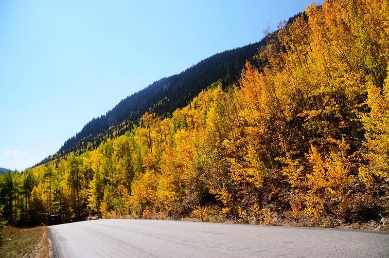 Scenic Drives in Guanella Pass, Colorado (12)
