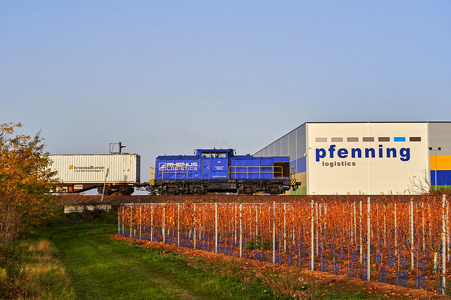 Rhenus Rail_104 (203 005)_Monsheim 07.11.2020 [Zuckerzug Neuoffstein - Novara]