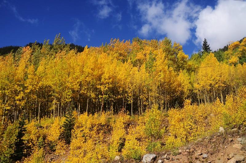 Scenic Drives in Guanella Pass, Colorado (25)