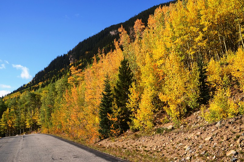 Scenic Drives in Guanella Pass, Colorado (15)