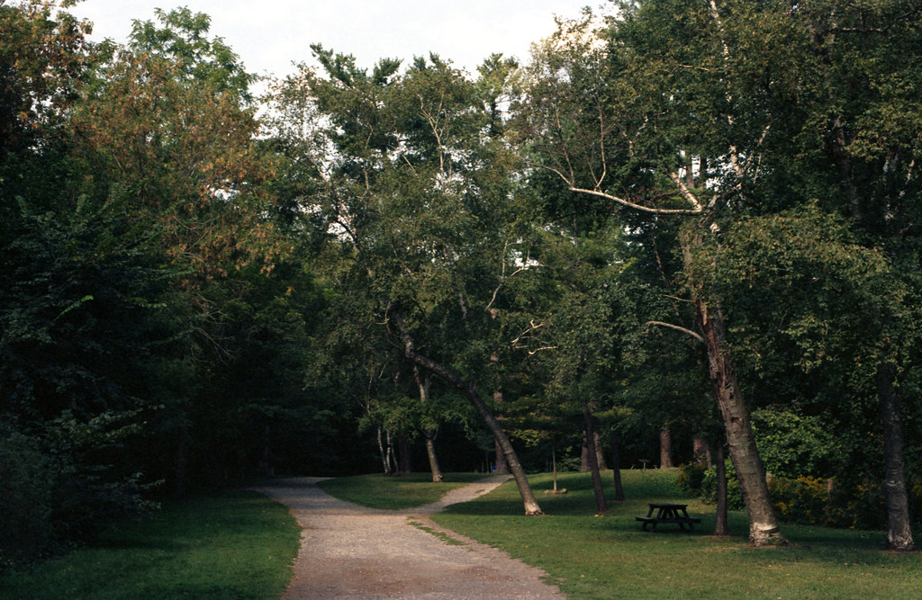 Sherwood Park Ravine Trails