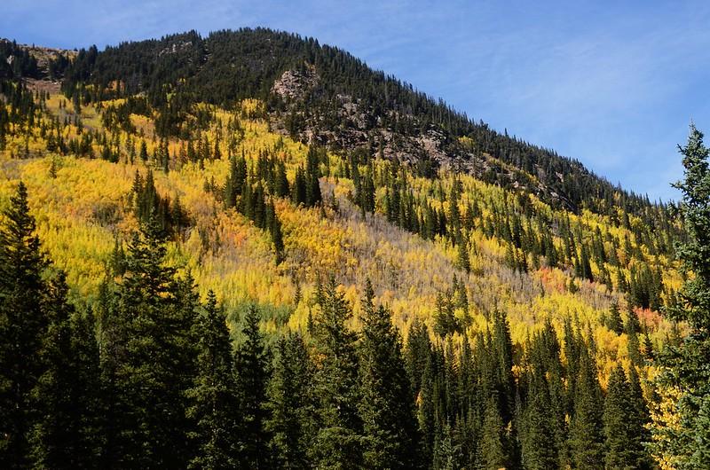 Scenic Drives in Guanella Pass, Colorado (40)