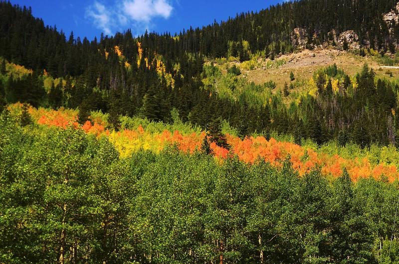 Scenic Drives in Guanella Pass, Colorado (31)