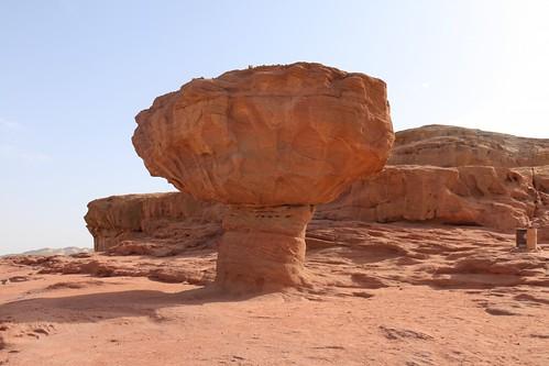 Mushroom-Rock