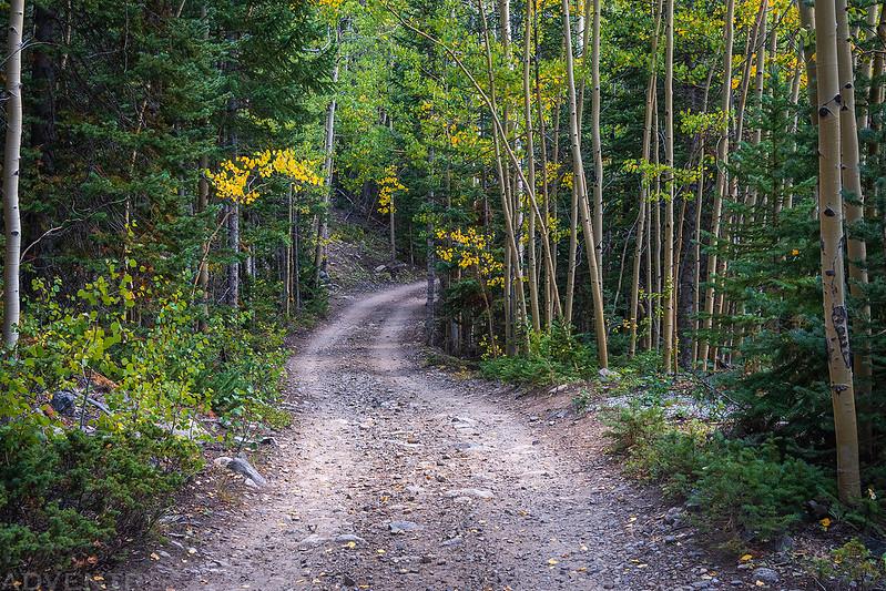 Middle Fork Road