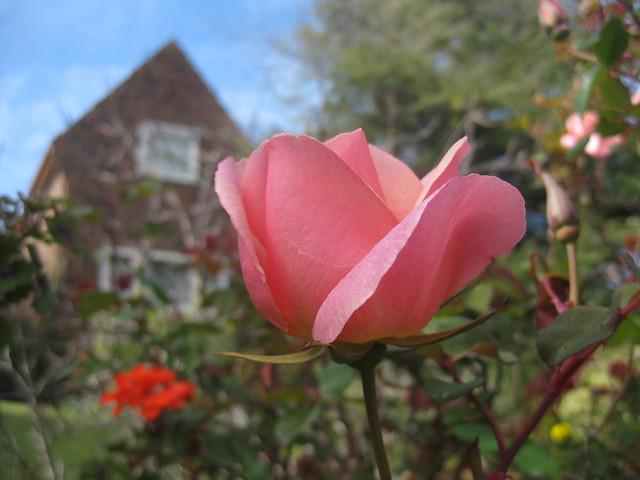 Art Deco Springtime - Preston