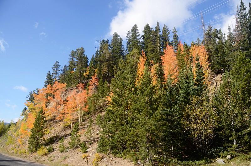 Scenic Drives in Guanella Pass, Colorado (41)