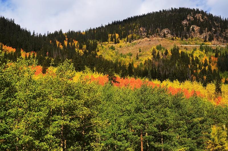 Scenic Drives in Guanella Pass, Colorado (29)