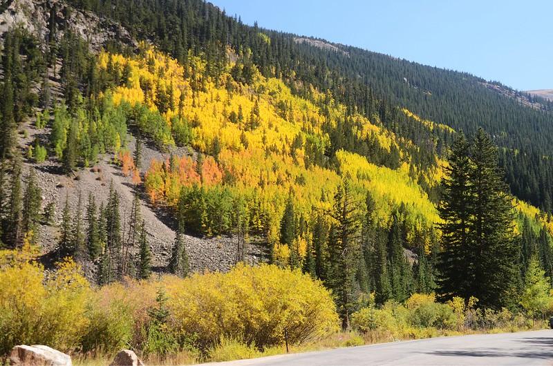 Scenic Drives in Guanella Pass, Colorado (22)
