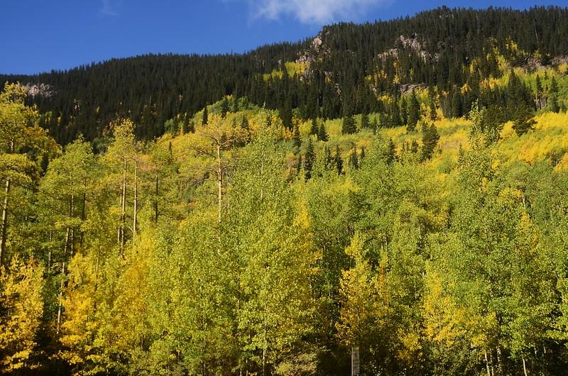 Scenic Drives in Guanella Pass, Colorado (30)