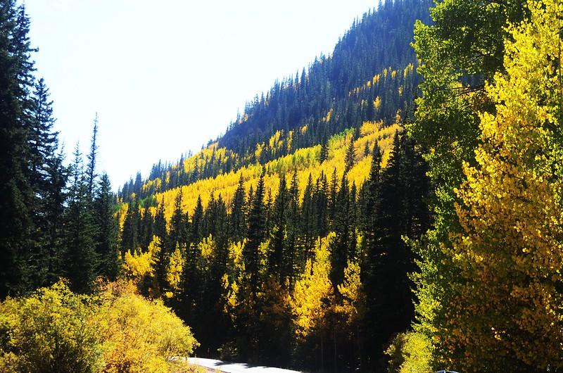 Scenic Drives in Guanella Pass, Colorado (23)