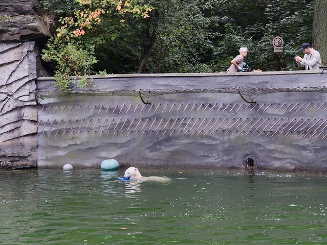 Tierpark 09125150