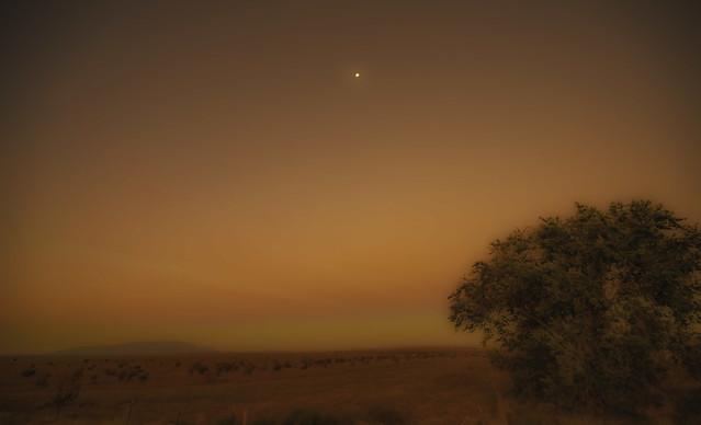 Dreamspace desert
