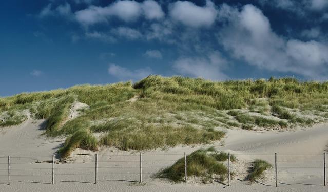 s´Gravenzande, Netherlands, Europe 2021