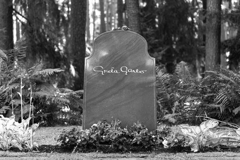 A Rose for Greta Garbo