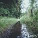 Mullerthal: Trail Haller (06)