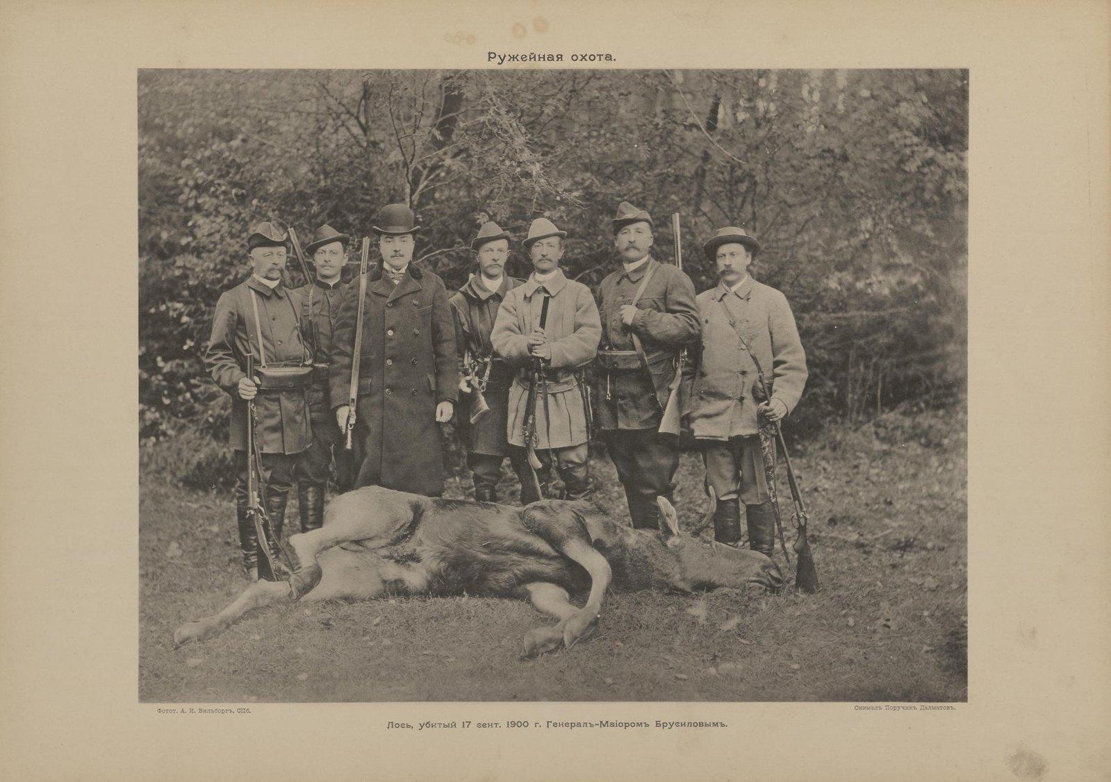 19. Ружейная охота. Лось, убитый 17 сентября 1900 г. генерал-майором Брусиловым А.А.