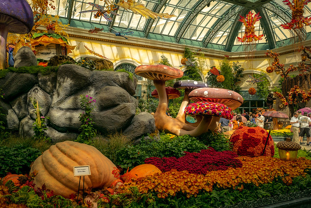 Bellagio Conservatory Fall Exhibit, Las Vegas NV