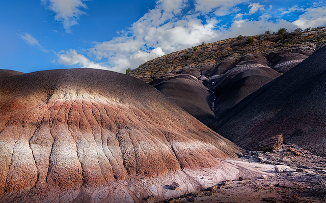 Red Hills by The Black Place