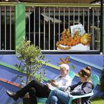 Relaxing in the Courtyard | © Pako Mera