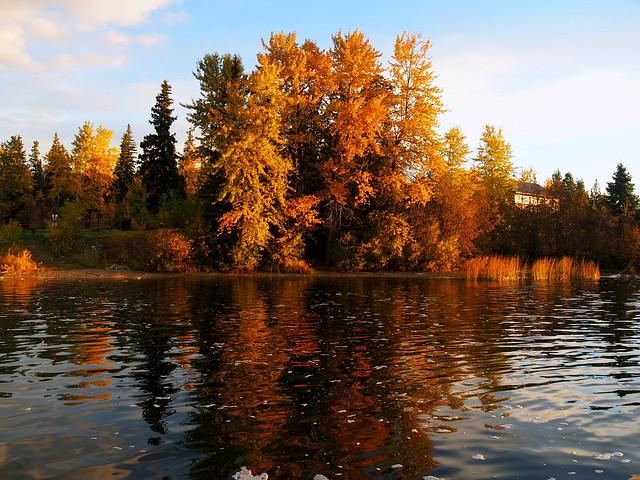 fall shot at the lake