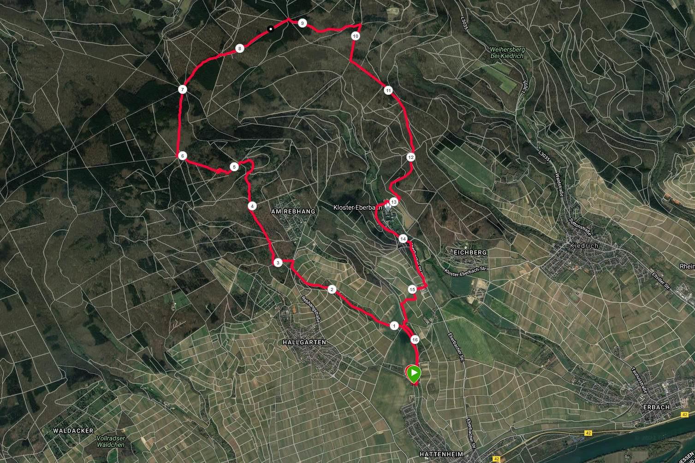 Hattenheim - Hallgarter Zange - Hattenheim (Garmin-Track)