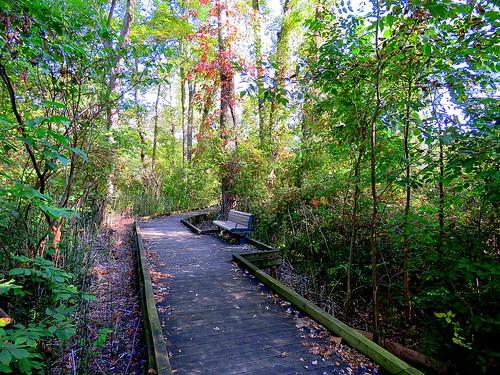New Richmond Bridge Park