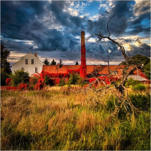 The Red House Behind Hohenbucko