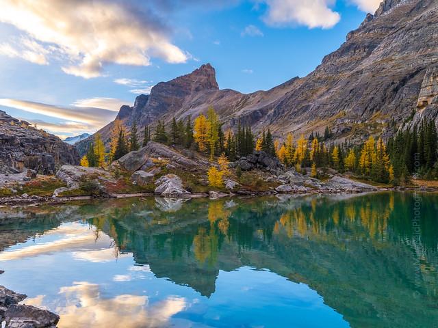 Lefroy Lake Fall Colors