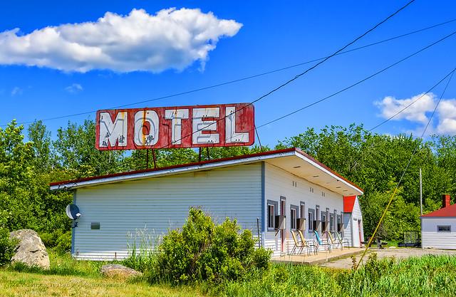 boidi or bass's motel