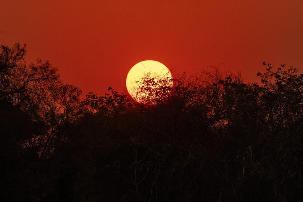 Sunset at Pantanal