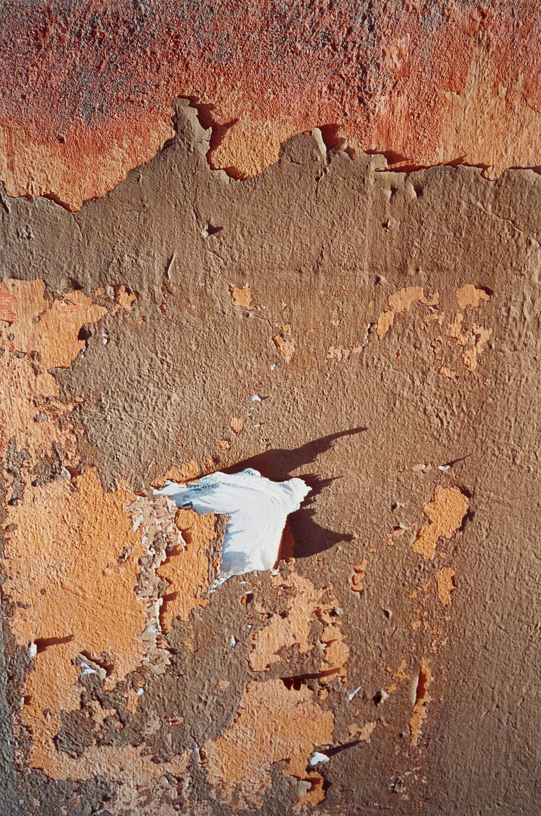 Морокко (терракотовая корка)
