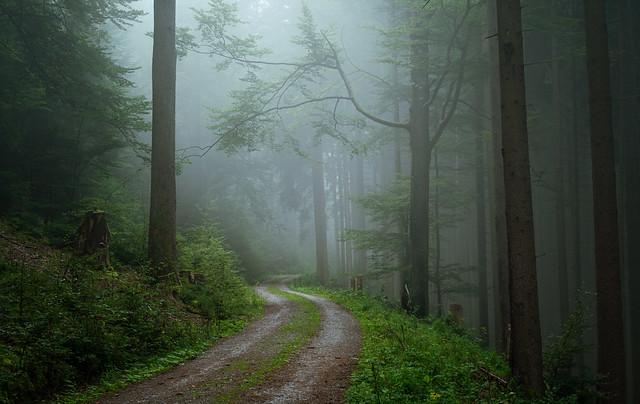 Road to Huzenbach