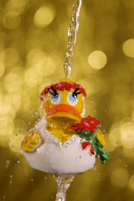 Do rubber ducks take showers?