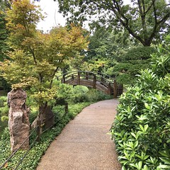 An afternoon at Fort Worth Botanic Garden.