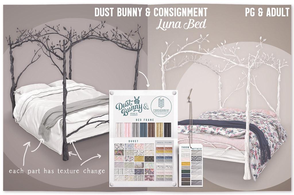 dust bunny & con @ anthem