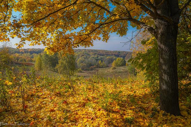 October in Tsaritsyno / Октябрь в Царицыно