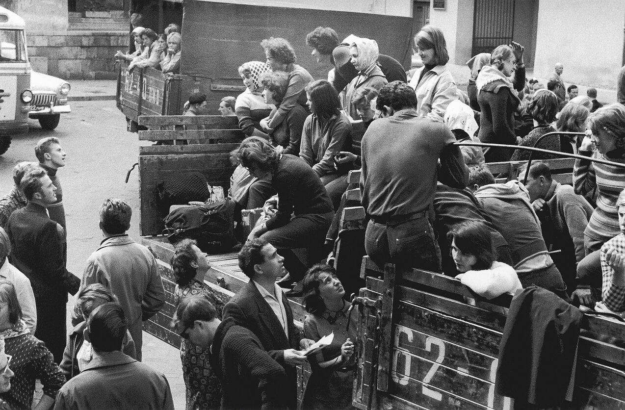 1959. Вильнюс Университет. Студенческое лето.