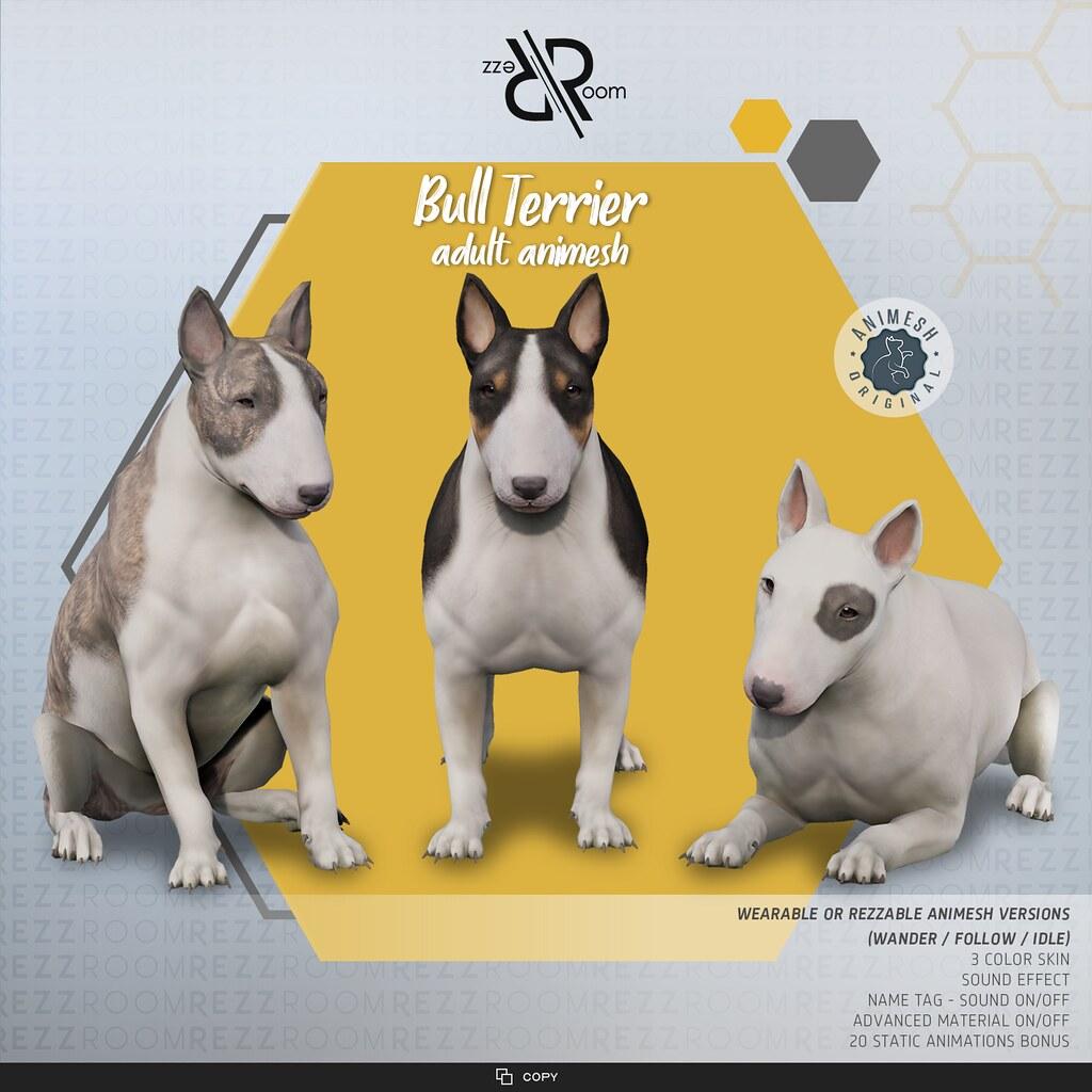 [Rezz Room]Bull Terrier Adult Animesh (Companion)